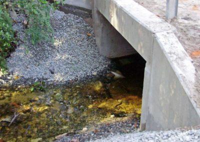 Loquat Bridge